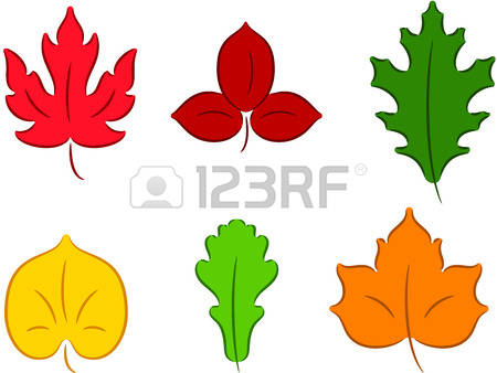 1,083 Linden Tree Leaf Stock Illustrations, Cliparts And Royalty.