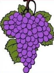 Free Oregon Grape Clipart.