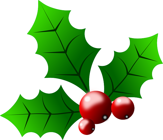 Free vector graphic: Holly, Plant, Green, Red, Berries.