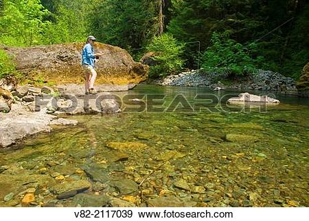 Stock Photograph of Flyfishing, Quartzville Creek Wild and Scenic.