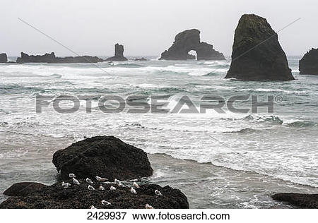Picture of Winter weather comes to the Oregon coast; Cannon Beach.