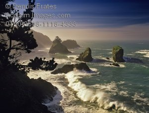 Stock Photography: Boardman State Park, Oregon Coast.
