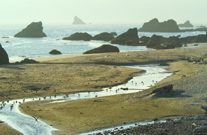 Harris Beach Photo Clipart Image.