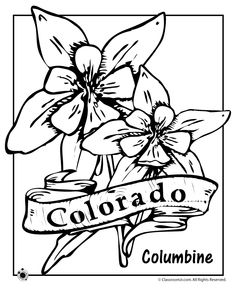 pinterest the worlds catalog of ideas state flower coloring pages