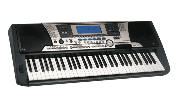 Electronic keyboard,Electronic instrument,Musical instrument.