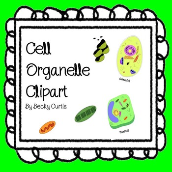 Cell Organelle Clipart.