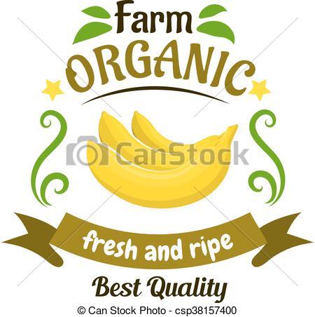 Vector Clipart of Organic farm banana fruits retro badge design.