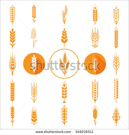 Ears Wheat Bread Symbols Organic Bread Stock Vector 294193421.