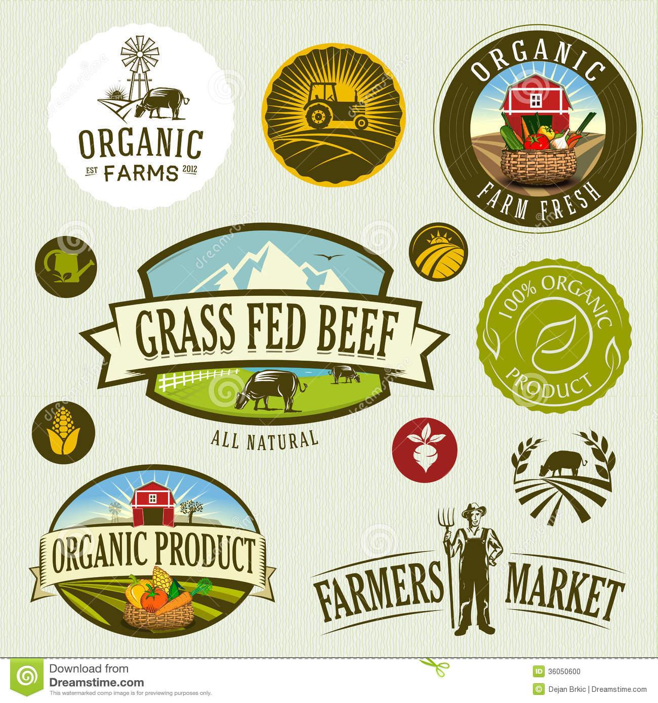 Organic Stock Illustrations.