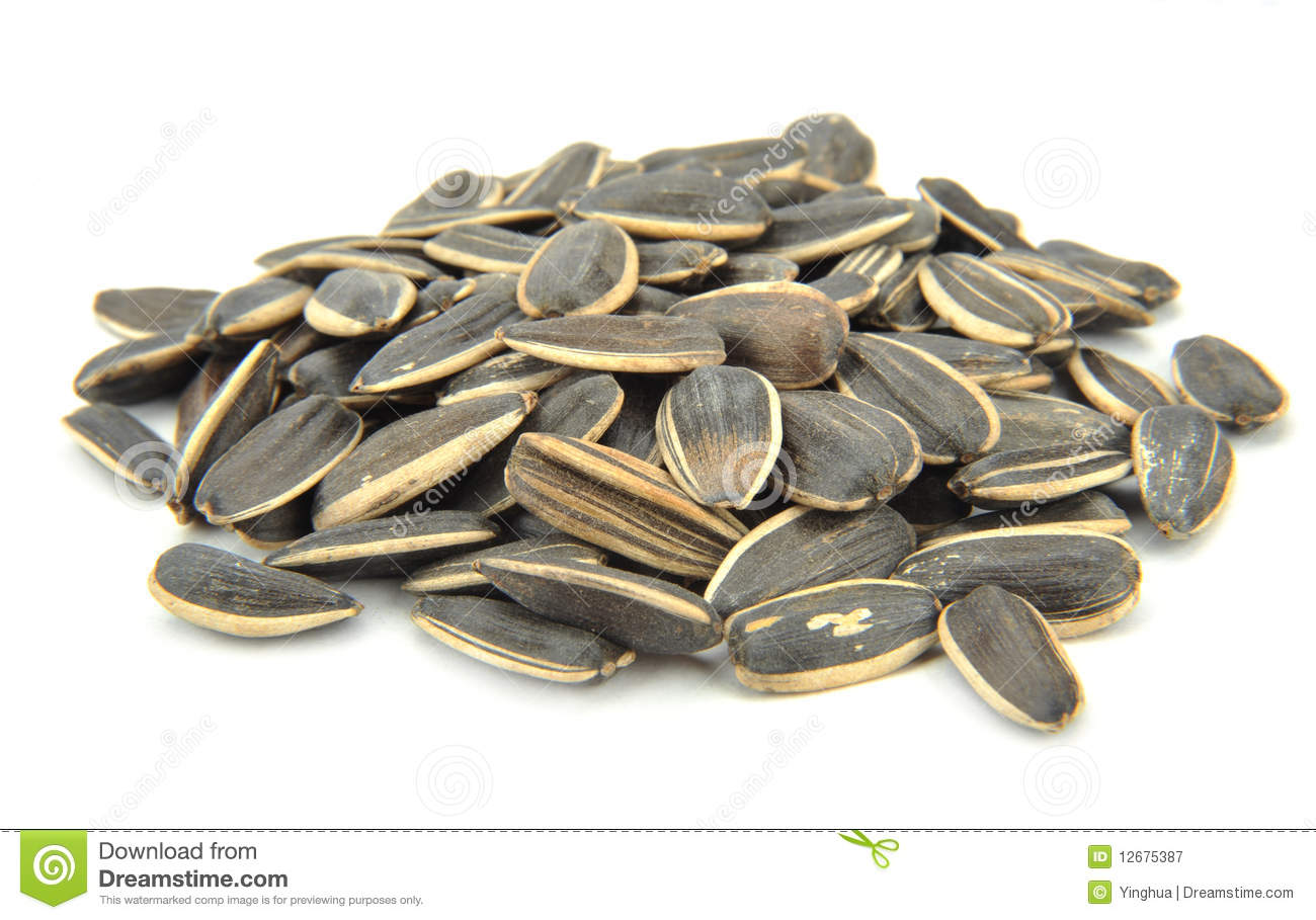 Sunflower Seeds Royalty Free Stock Photography.