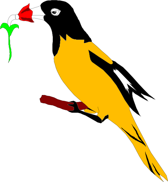 Oriole With Flower Clip art.