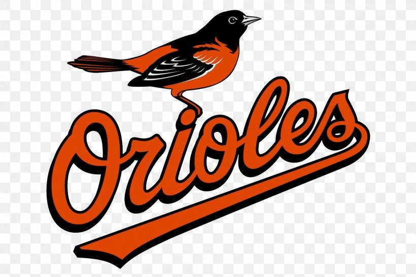 Baltimore Orioles Logo MLB Baseball Vector Graphics, PNG.