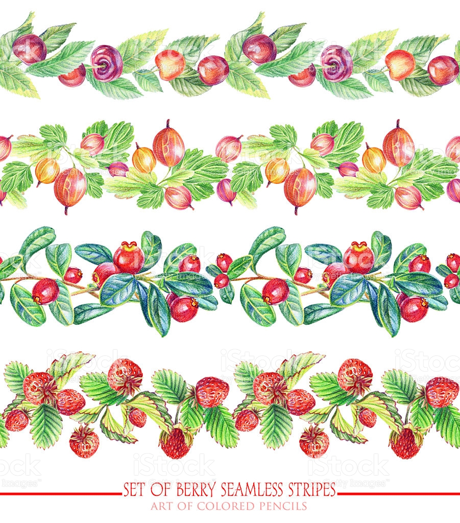 Set With Seamless Ornamental Floral And Berries Stripes stock.