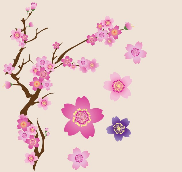 Cherry Blossom Flower Vector.