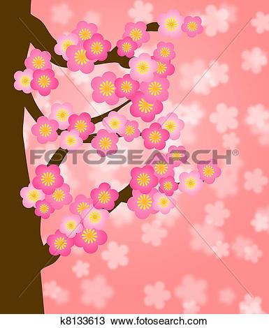 Drawing of Flowering Cherry Blossom Tree in Spring k8133613.