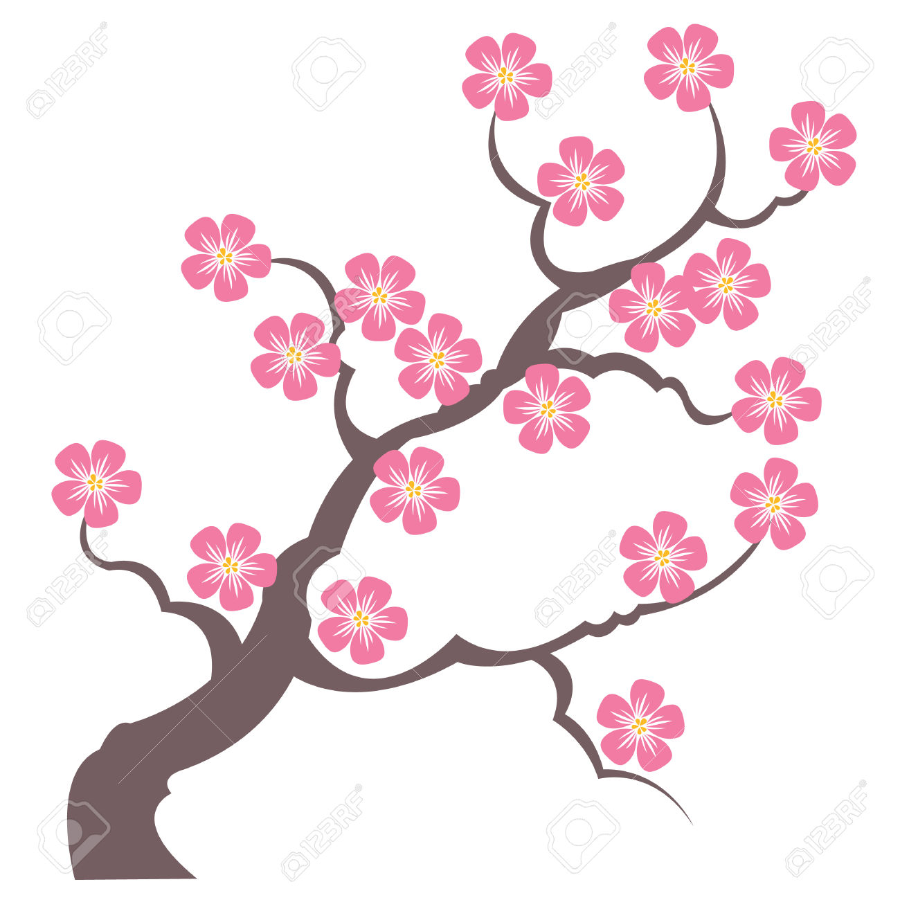 140 Japanese Flowering Cherry Stock Vector Illustration And.