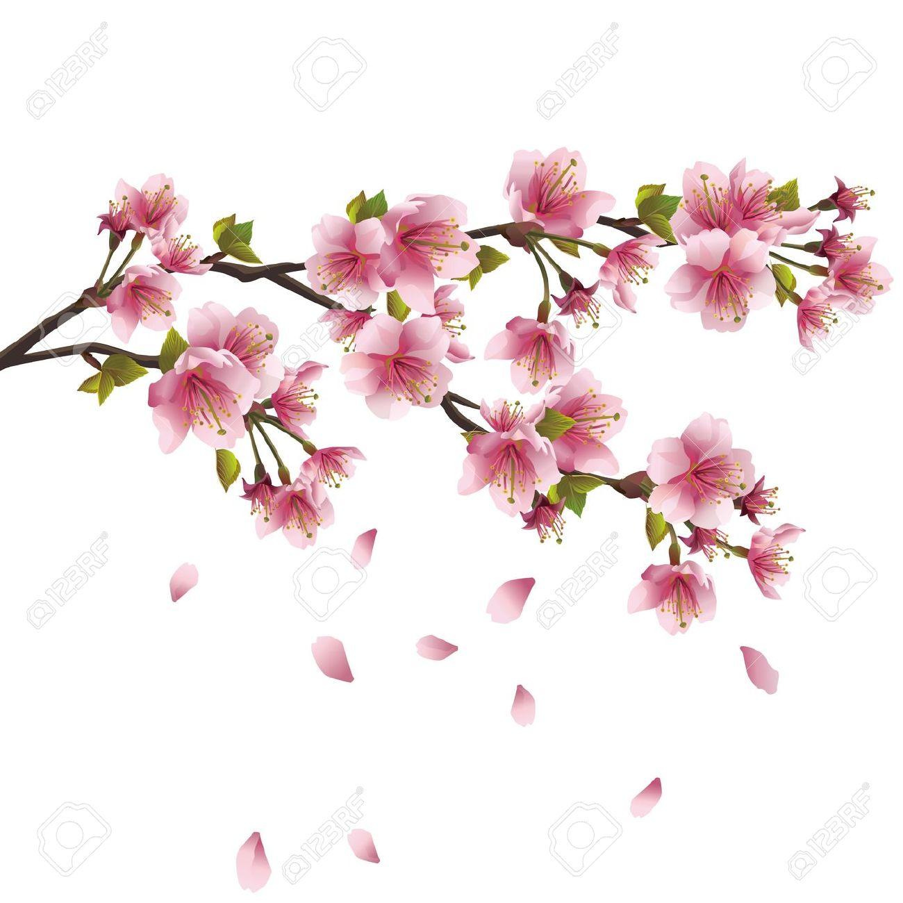 Sakura Blossom Pink.