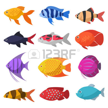 22,447 Tropical Fish Stock Vector Illustration And Royalty Free.