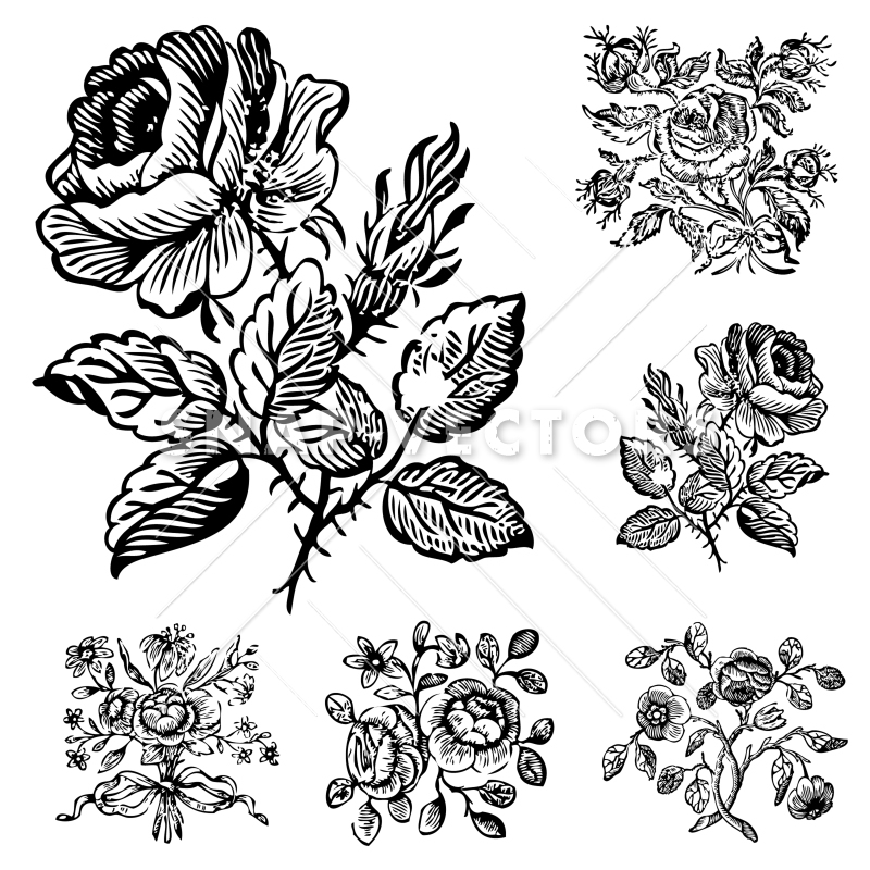 Vector Clipart Vintage Flower and Rose Ornaments.