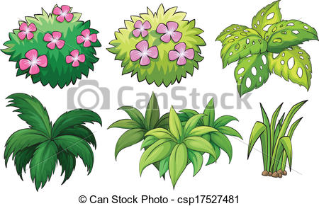 Vector of Six ornamental plants.