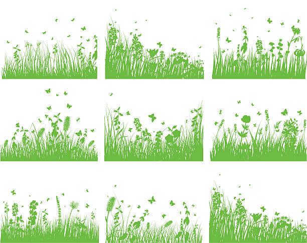 Ornamental Garden Clip Art, Vector Images & Illustrations.