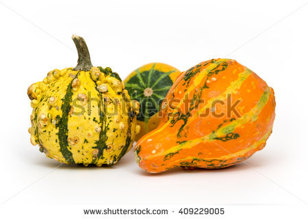 Ornamental Gourd Stock Photos, Royalty.