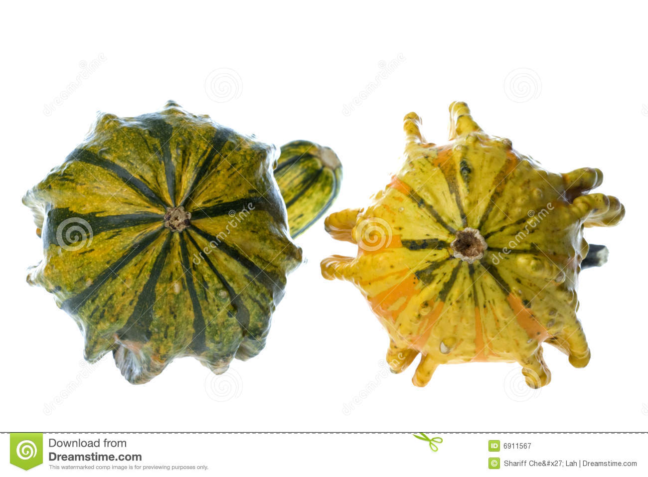 Bowl Of Ornamental Gourds Stock Images.