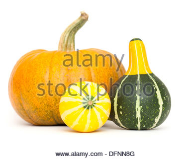 Ornamental Gourds Cut Out Stock Images & Pictures.