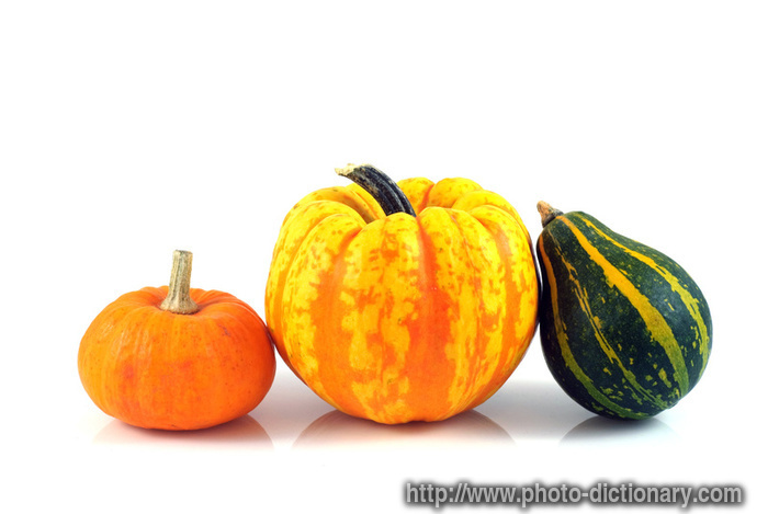 Gallery For > Fruit and Gourds Clipart.