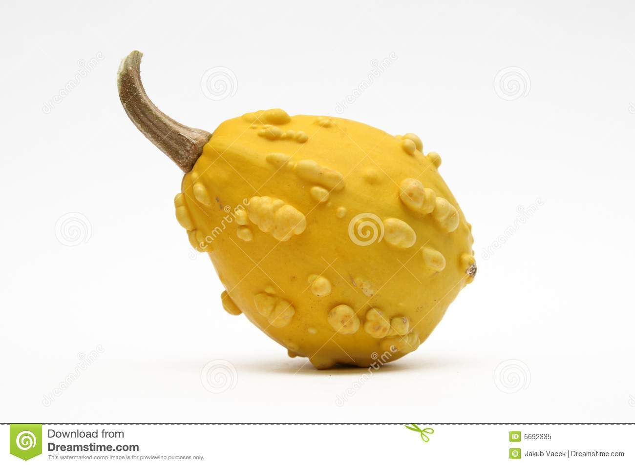 Decorative Gourd Royalty Free Stock Photo.