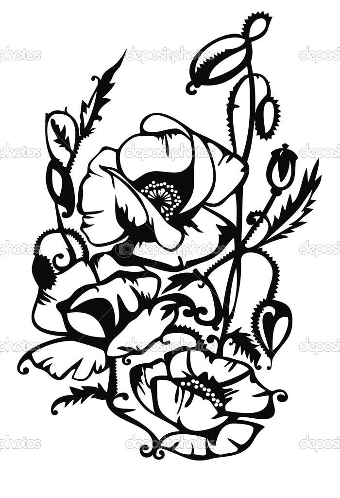 Ornamental poppy flower.