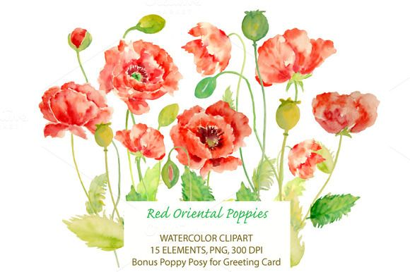 Oriental, Poppies and Graphics on Pinterest.