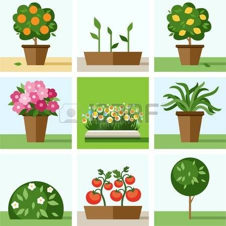 11,361 Shrubs Stock Vector Illustration And Royalty Free Shrubs.