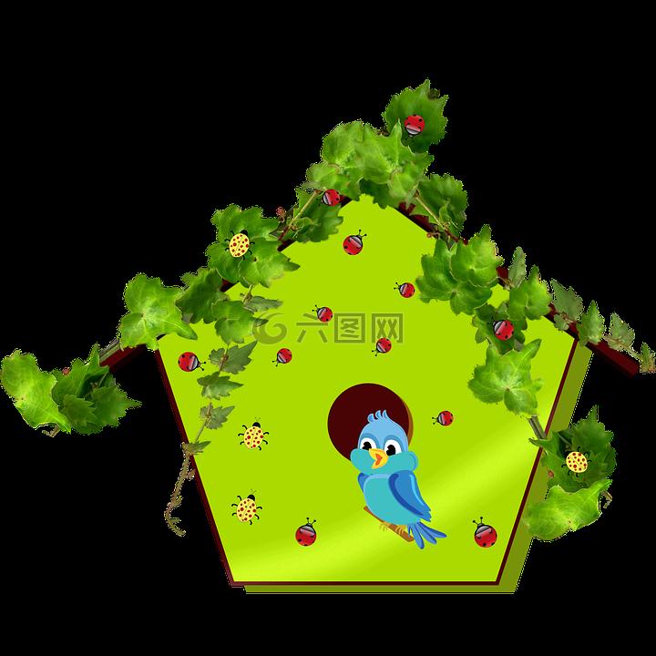 蓝鸟,鸟,育雏高清图库素材免费下载(图片编号:6577841).
