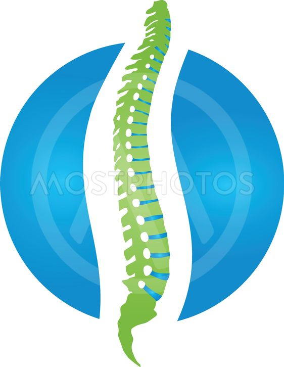 Spine and ball, orthopedic\