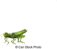 Orthoptera Vector Clip Art EPS Images. 21 Orthoptera clipart.