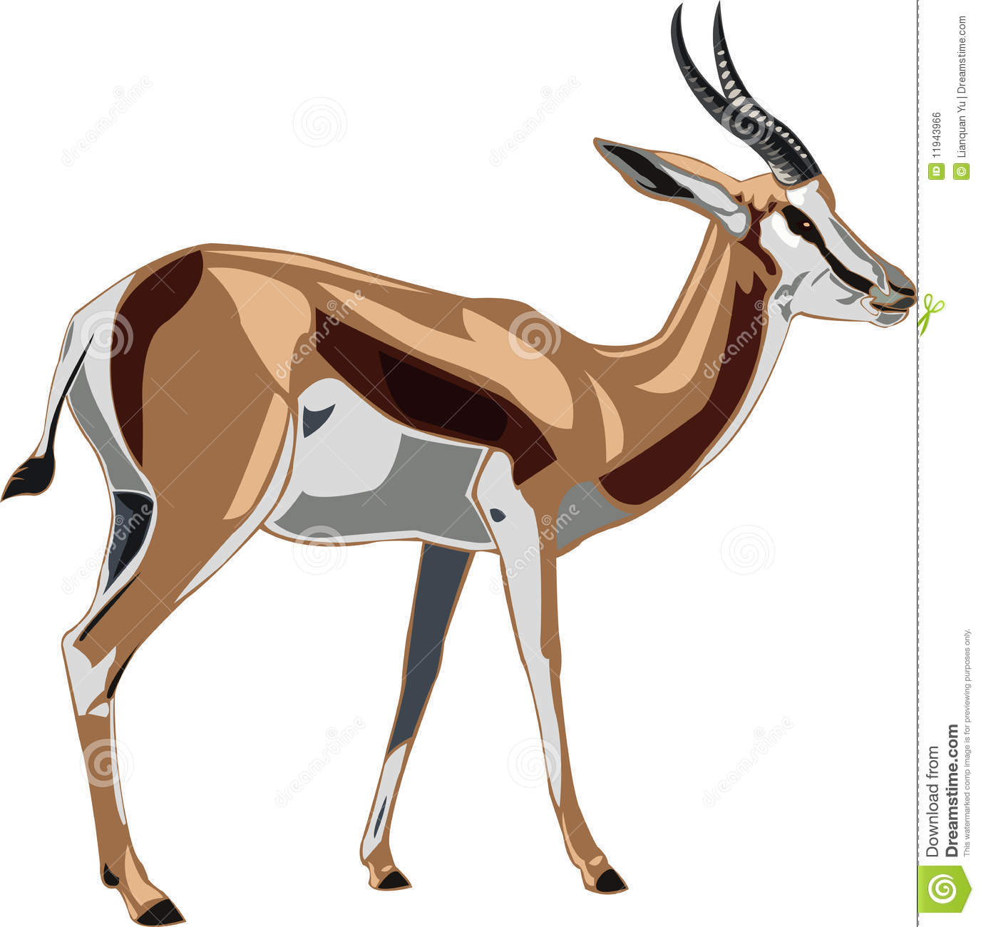 Oryx antelope clipart #19