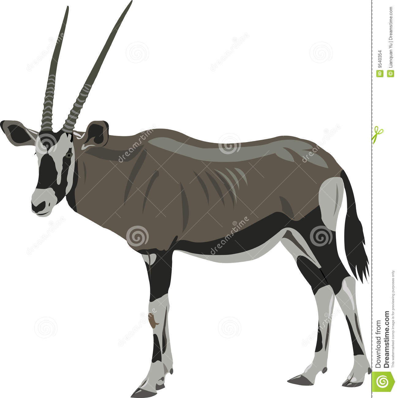 African Oryx Stock Illustrations.