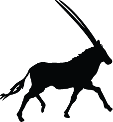 Oryx Silhouette.