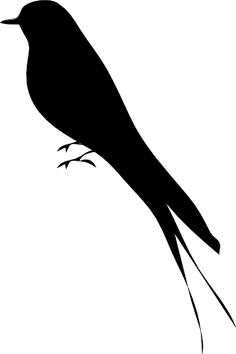 Image result for magpie tattoo.