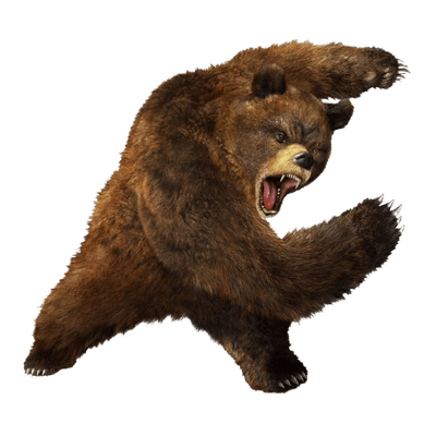 Oso PNG.