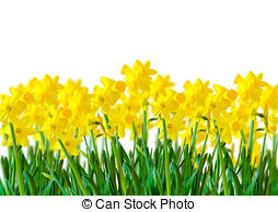Yellow colourful Stock Photos and Images. 68,226 Yellow colourful.
