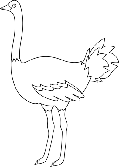 Ostrich Black And White Clipart.