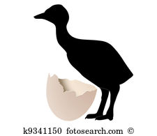 Ostrich egg Clip Art Illustrations. 35 ostrich egg clipart EPS.