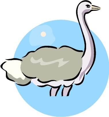 Ostriches Clip Art.