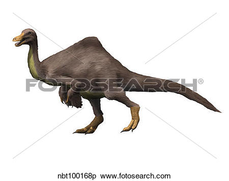 Stock Illustration of Deinocheirus is an ostrich.