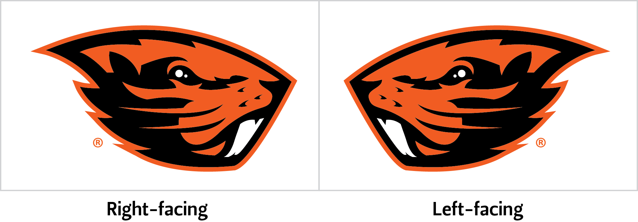 Oregon state beaver logo clipart images gallery for free.