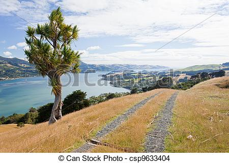 Stock Photo of Otago peninsula coastal landscape, Dunedin, NZ.