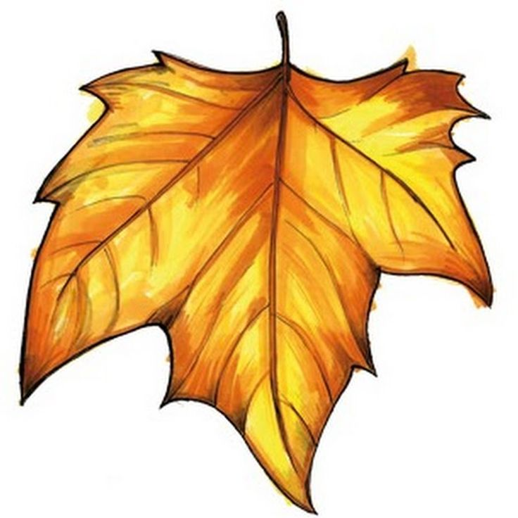 1000+ images about IMÁGENES OTOÑO on Pinterest.