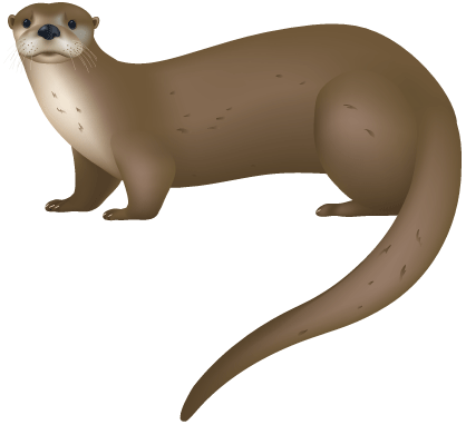 55+ Otter Clipart.